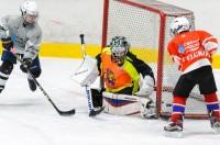 ELGRAFF. Специальный курс по хоккею
