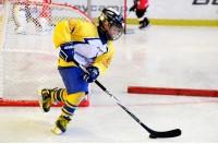 Czech International Hockey Camp. Хоккейный лагерь для полевых игроков